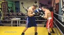 24 01 2016 Fight 1 Real Boxing Show