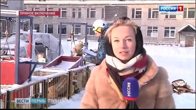 Молодые профессионалы: В Перми стартовал чемпионат профмастерства