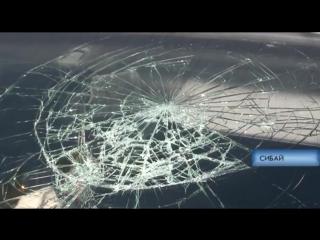 9 человек, в том числе пятеро детей, пострадали в ДТП с маршруткой в Сибае