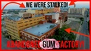 WE WEREN'T ALONE Followed at ABANDONED GUM FACTORY *SCARY*