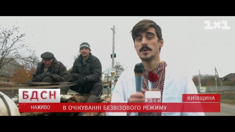 Kto_sozdal_Maydan_-_Ku_Klux_Klan__Timati_-_Baklazhan_parodiya