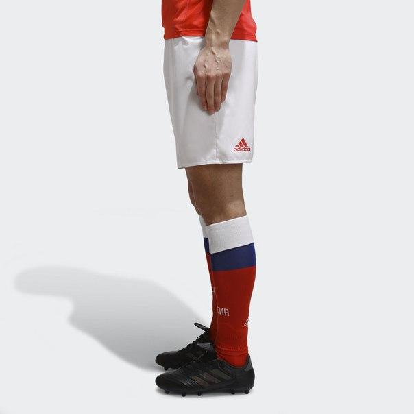 Спортивные шорты Сборной России
