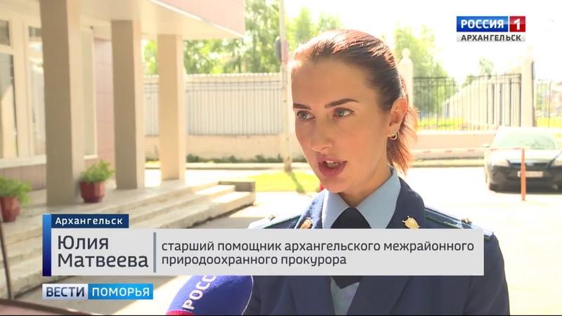 Прокуратура озвучила предварительные результаты проверки сброса (ГТРК Поморье 10.08.2018)
