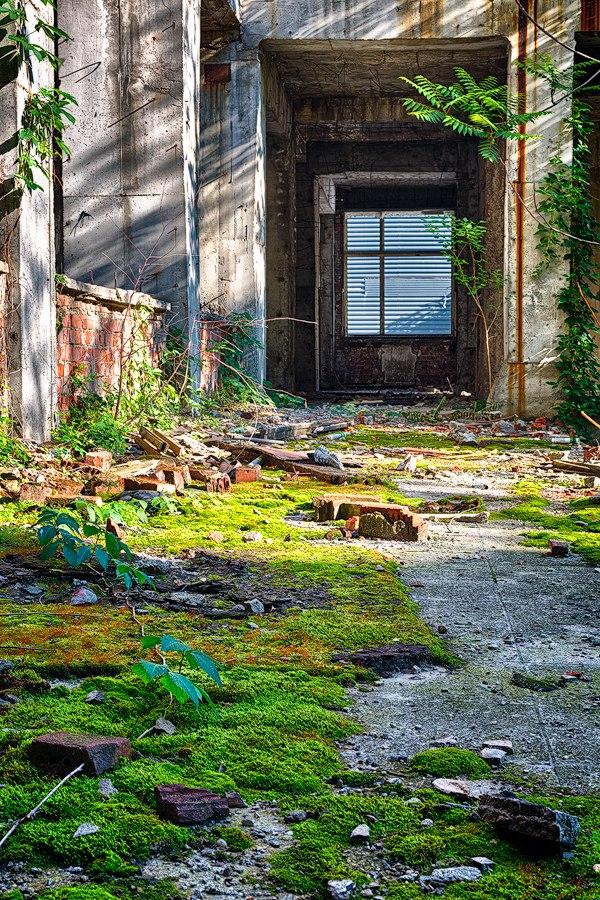 Проект фотографа из Бухареста Marco Marinescu с красивым названием «Filantropia» — A Forgotten Ruin.