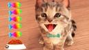 Little Kitten My Favorite Cat Pet Care Game - Fun Play Kitten Mini Games For Children