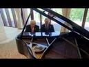 Vladimir Putin - MOONLIGHT SONATA vs STILL.D.R.E. PIANO (MASHUP)