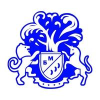 Логотип Бизнес Молодость. Владимир.