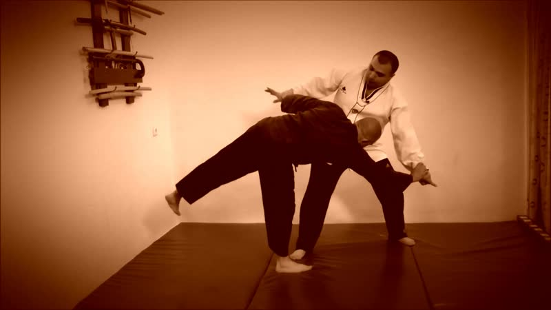 Rebel Hapkido Series 합기도 By Vidadi Hajiyev (45)