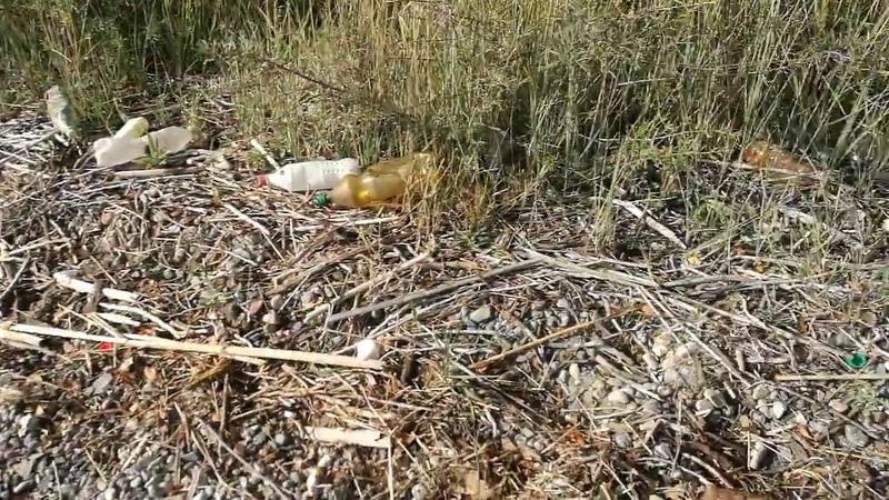 Иссык-Куль уничтожают пластик и браконьеры