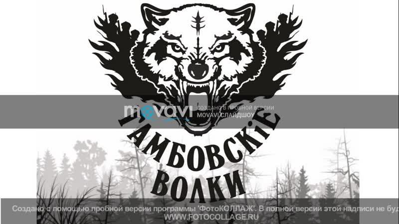 Тамбовские волки умеют делать красиво смотреть онлайн без регистрации