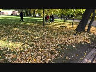 Белка 🐿 Осень 🍂