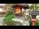Walking Around Old Japanese Shrines