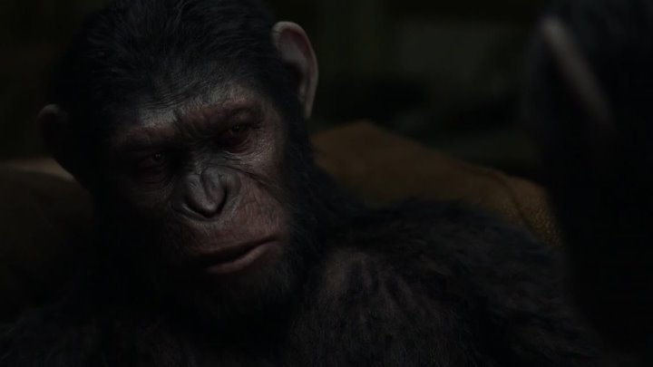.Планета обезьян: Революция Dawn of the Planet of the Apes, 2014 12