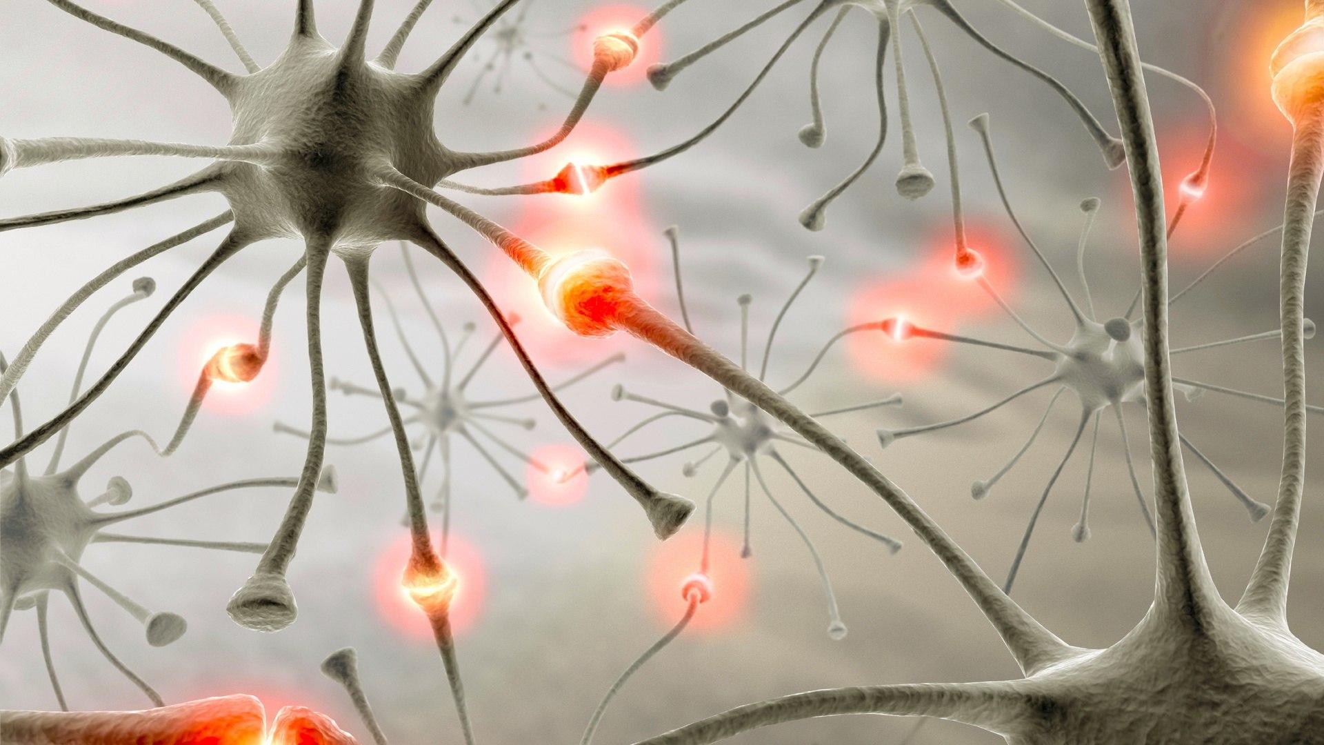 Как создать новые нейронные связи