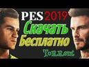 Где скачать PES 2019 на PC через торрент Полная версия