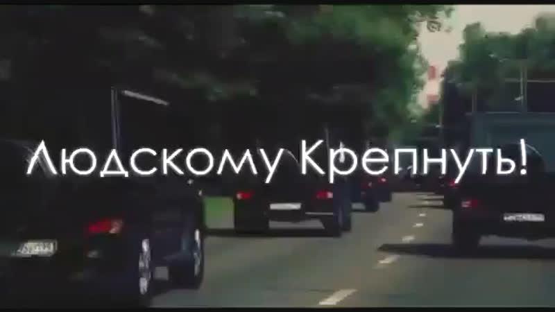 СЛОН 🐘