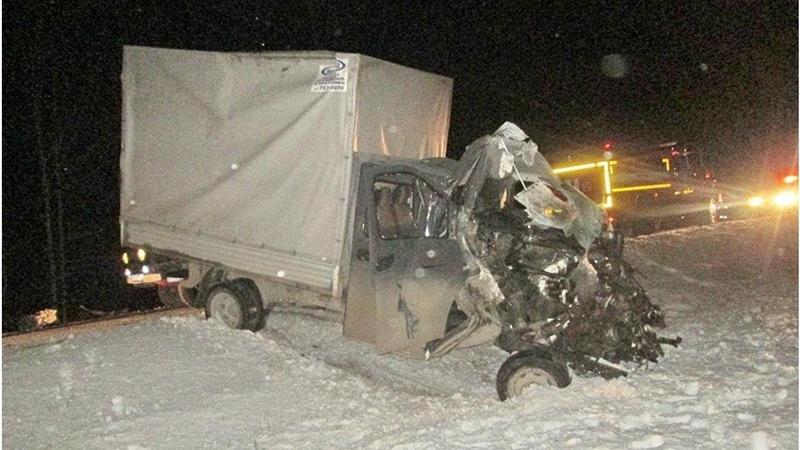 В ДТП с грузовиком под Челябинском погибли пять человек