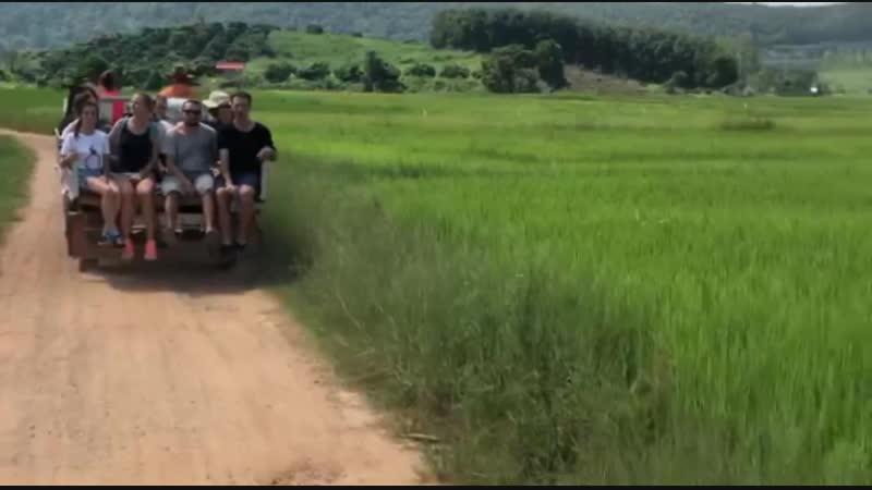 @sunsurfers в рисовых полях под мотивы Edo and jo