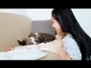 Waveya vlog - 귀염뽀작 애교 대방출 ! 다 보면 외로워지는 영상