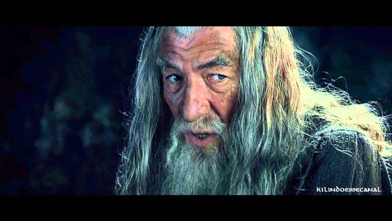 Palavras Sábias de Gandalf - O Senhor dos Anéis - Sociedade do Anel