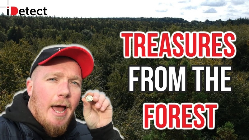 Лесной поиск с Nokta Anfibio Multi