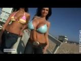 Denise Milani non-nude erotic super model big tits sexy girl Playboy эротика большие сиськи 6 размер - PF Beach Day