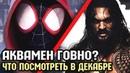 ЧТО ПОСМОТРЕТЬ В КИНО В ДЕКАБРЕ АКВАМЕН ГОВНО Бамблби или Человек паук Через вселенные