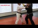 S.M. Mohamad Tabatabai - Unfurling Crane - Technique Breakdown - American Kenpo