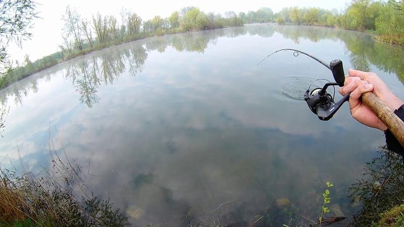 Szczupak 80 | Piękny Hol Ryby | Niedoszła Życiówka | Żwirownia Zwięczyca | Rzeszów