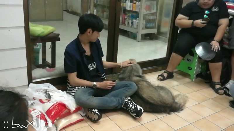 170513 SingtoPrachaya ทำบุญน้องหมา @ บ้านสงเคราะห์สัตว์พิการ ปากเกร็ด