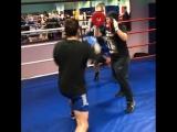 kitek.boxing_video_1521143552193.mp4