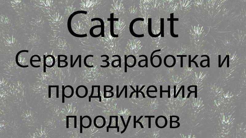 Catcut сервис заработка денег без вложения. Привлечение людей, раскрутка инфопродуктов с минимумом.