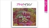 Pink Noisy - Ani Kuni (Anthony El Mejor &amp DJ Nil Remix)
