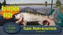 Рыбалка на вытеках Астрахань Ловим судака жереха на джиг и воблеры
