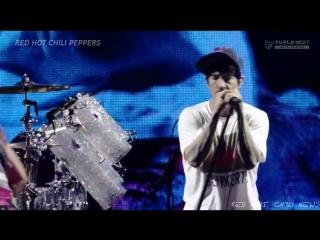 Red Hot Chili Peppers - Fuji Rock 2016 ((PRO SHOT)) ((UNRELEASED))