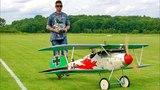 BIG RC ALBATROS D.V SCALE MODEL AEROPLANE FLIGHT DEMONSTRATION