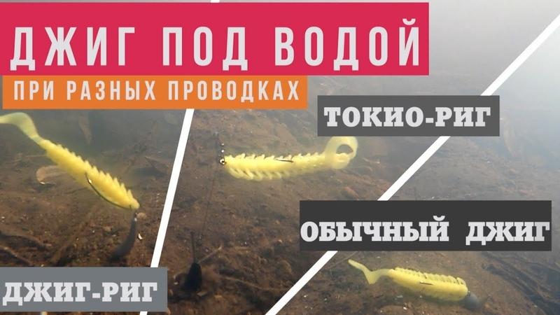 Что там под водой или день пассивной щуки TokyoRig vs JigRig vs Jig