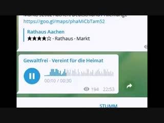 Liebe Gelbwesten..Gewaltfrei - Vereint für die Heimat, [09.01.19 22.53]