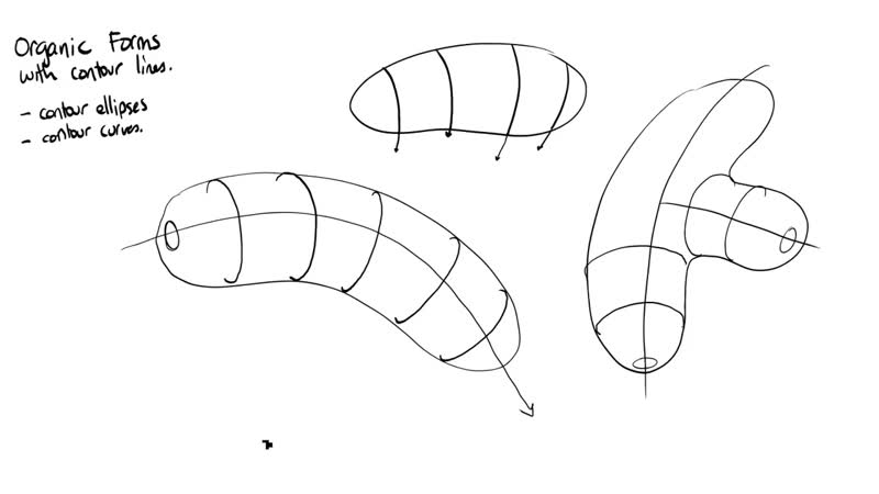 Drawabox Lesson 2, Exercise 2_ Organic Forms with Contour Lines