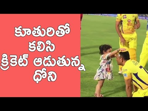 Ms Dhoni Daughter Ziva Playing With Dad's Cap After Match Netivaartalu.com