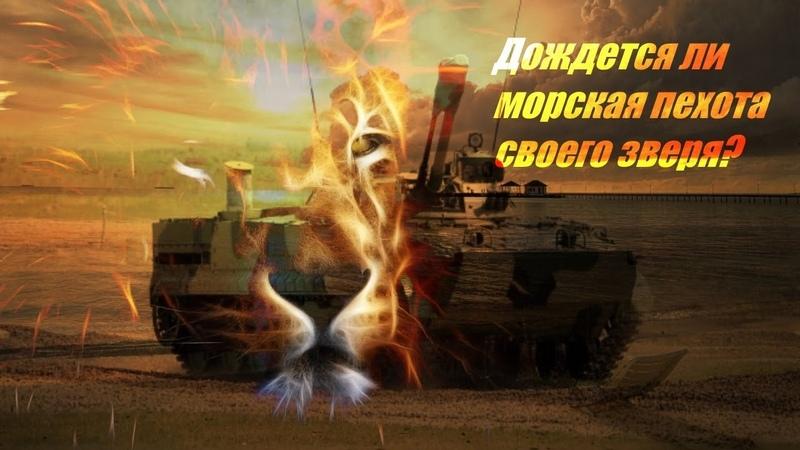 NI: Новый зверь для морской пехоты России: достанется ли он ей?