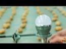 Свет от картошки 400 штук - 135 Вольт На даче пригодится.....