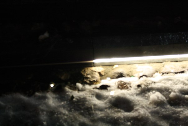 Зато ступеньки бассейна подсвечиваются светодиодной полосой. Пока она ровно на половину сломана. Это не одна полуметровая секция, реально не работает почти полностью: https://vk.com/photo16174219_456259018  Январь 2018