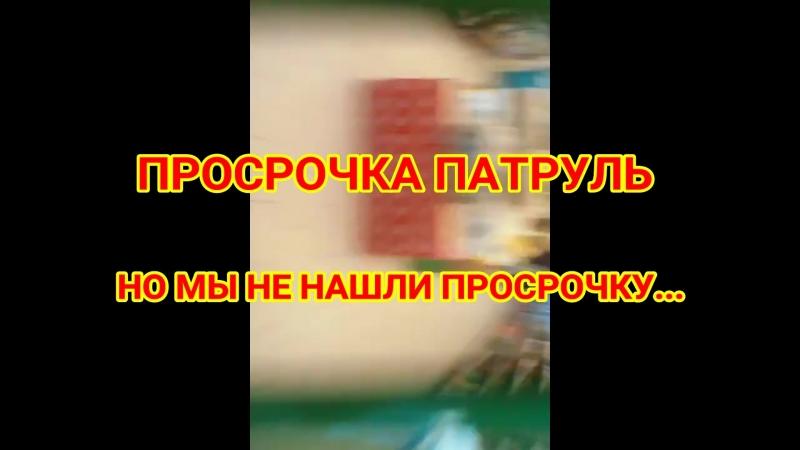 ПРОСРОЧКА ПАТРУЛЬ! (ПИЛОТНЫЙ ВЫПУСК)