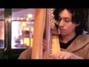 Captain OKane - OCarolan Celtic harp
