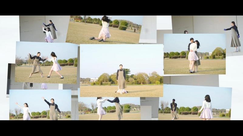 【ちかのとかげ】 ニア 踊ってみた【淡咲みゆう】 sm33153530