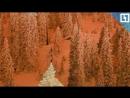 Оранжевый снег в Красной поляне