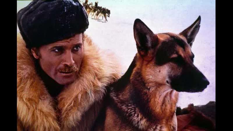 Возвращение Белого Клыка 1974 вестерн приключения Лючио Фульчи
