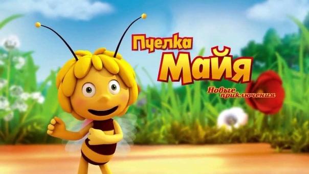 Мультфильм «Пчёлка Майя (2014)»: Как научить детей безрассудству