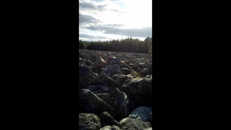 Журчание Каменной реки